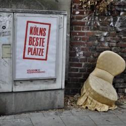 Kölnsbesteplätze_Anemone_Träger